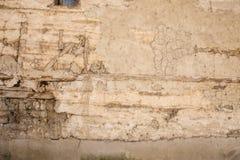 Sten- och träväggbakgrund Royaltyfria Bilder