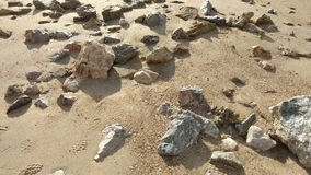 Sten på sandstranden Fotografering för Bildbyråer