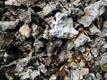 Sten på torr jordning royaltyfri fotografi