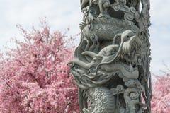 Sten som snider kinesisk stil för drakeskulpturpol Arkivfoto