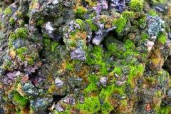 Sten som täckas med grön mossa textur Natur En ovanlig sten Arkivbilder