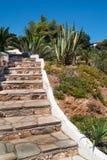 Stena banan av stenen in i trädgård under dagtid på Chalkidiki Royaltyfri Foto
