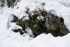Stena dolt med mossa och insnöat bergen arkivbilder
