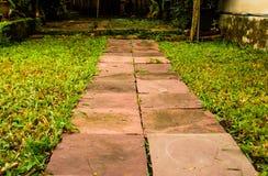 Stena gångbanan i parkera på gräset royaltyfri foto