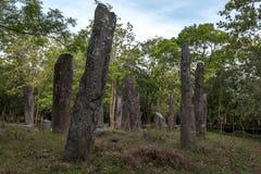 Stena pelare som tillhör en forntida byggnad på den Pidurangala templet på Sigiriya i Sri Lanka Royaltyfria Foton