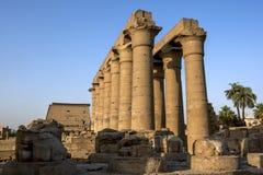 Stena sned kolonner på den Luxor templet i Egypten Royaltyfri Foto