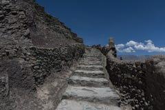 Stena trappa av den ledande raksträckan för den Leh slotten uppåt Royaltyfri Fotografi