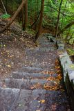 Stena trappan i skog i kärnmjölknedgångdelstatspark Arkivbilder