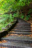 Stena trappan i skog i kärnmjölknedgångdelstatspark Arkivfoton