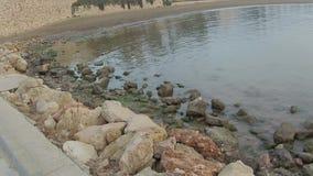 Stenar stock video