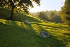 stenar Arkivbild