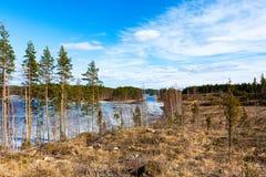 Stenar av Finland Arkivfoto