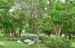 Stenar bänkar, träd i parkera Arkivbilder