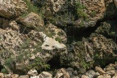 Stenar bakgrund i akvarium arkivbild
