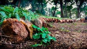 Stenar bredvid vägen Arkivfoto