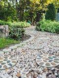 Stenar gångbanan i trädgård Arkivfoto