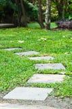 Stenar gångbanan i trädgården Arkivfoton