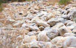 Stenar i öknen Arkivfoto