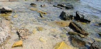Stenar i bevattna Fotografering för Bildbyråer