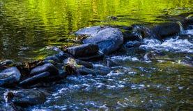 Stenar i floden Arkivfoton