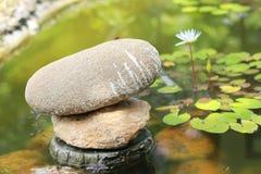 Stenar i trädgård Arkivfoto