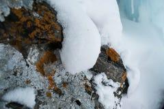 Stenar med champinjoner arkivfoto