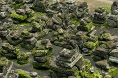 Stenar med mossa Arkivfoton