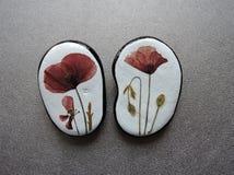 Stenar med pressande blommor Royaltyfri Foto