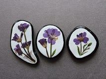 Stenar med pressande blommor Arkivbilder