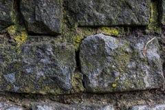 Stenar med skottet för makro för bakgrund för mossamodelltextur arkivfoto