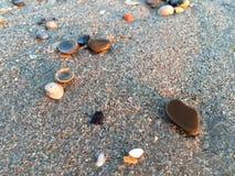 Stenar n en strand Royaltyfri Foto