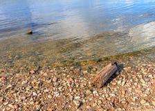 Stenar och ett stycke av timmer på flodbanken Arkivfoto