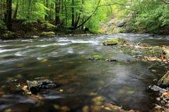 Stenar och forsar i den bidade floden Arkivbilder