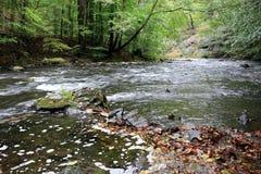 Stenar och forsar i den bidade floden Arkivfoton