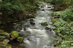 Stenar och forsar i den bidade floden Fotografering för Bildbyråer
