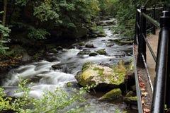 Stenar och forsar i den bidade floden Royaltyfria Bilder