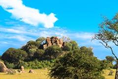 Stenar och gräs och himmel serengeti Arkivbilder