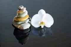 Stenar och orchid royaltyfria foton