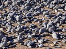 Stenar och sand på stranden arkivfoton