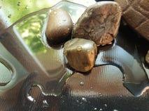 Stenar och vatten 1 Royaltyfri Foto