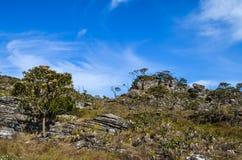 Stenar på överkanten av ett kallat berg når en höjdpunkt av höken royaltyfri bild