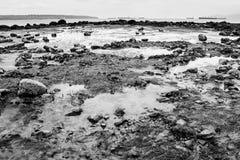 Stenar på den andra stranden Arkivfoto