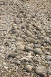 Stenar på grus sätter på land, Jackson Lake, den Teton nationalparken, Wyomi Royaltyfria Foton