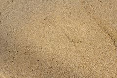 Stenar på sanden royaltyfria bilder