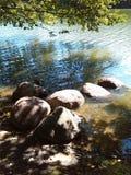Stenar på sjön Arkivbilder