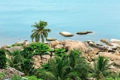 Stenar sand, havet, kokosnöt gömma i handflatan, ön, Thailand, den bästa sikten, bl royaltyfria bilder