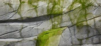 Stenar texturerar och bakgrund Vagga textur fotografering för bildbyråer