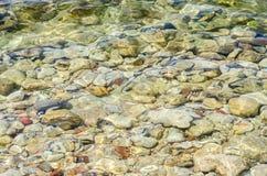 Stenar under havsvatten Arkivbilder