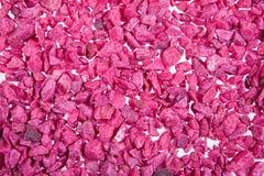 stenar violeten Arkivfoto