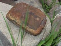 Stenarna av en ovanlig form som skapas av naturen Arkivfoto